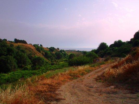 big-plot-of-land-for-salei-n-kissonerga_full_4